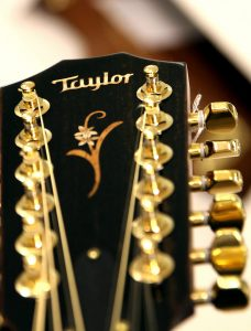 גיטרות Taylor